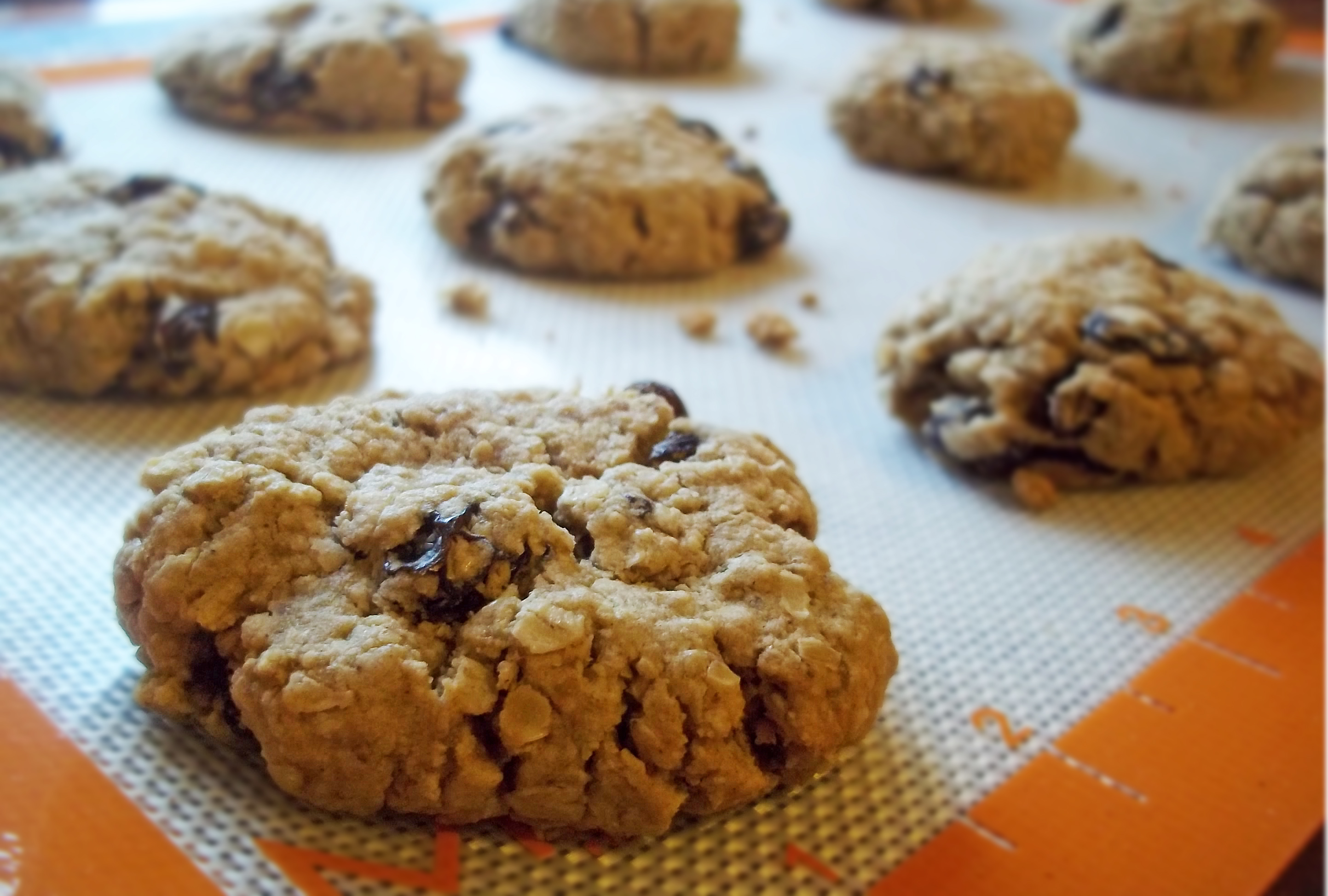 Gluten-Free Oatmeal Raisin Cookies | Natural Chow
