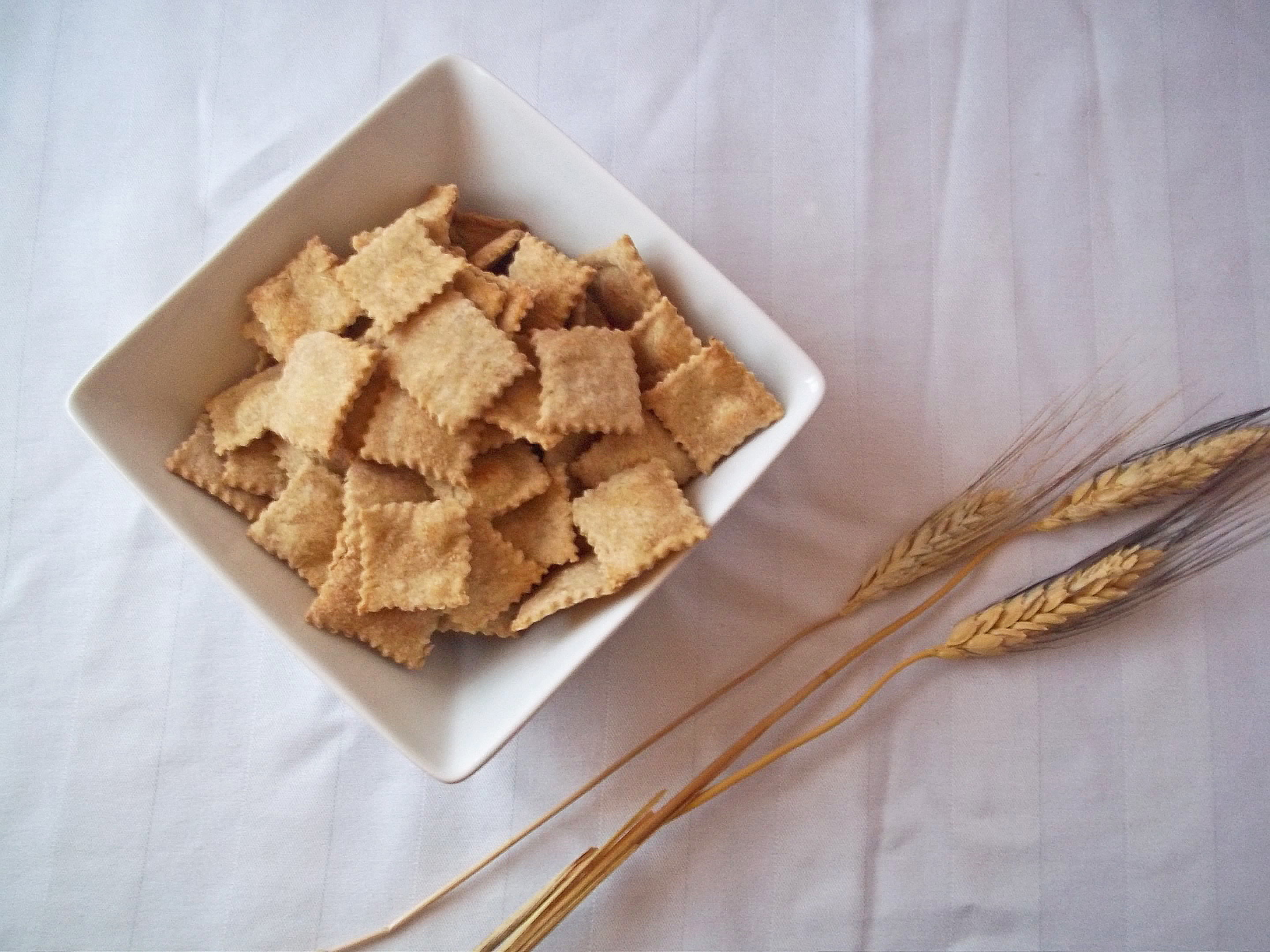 Homemade Whole Wheat Crackers