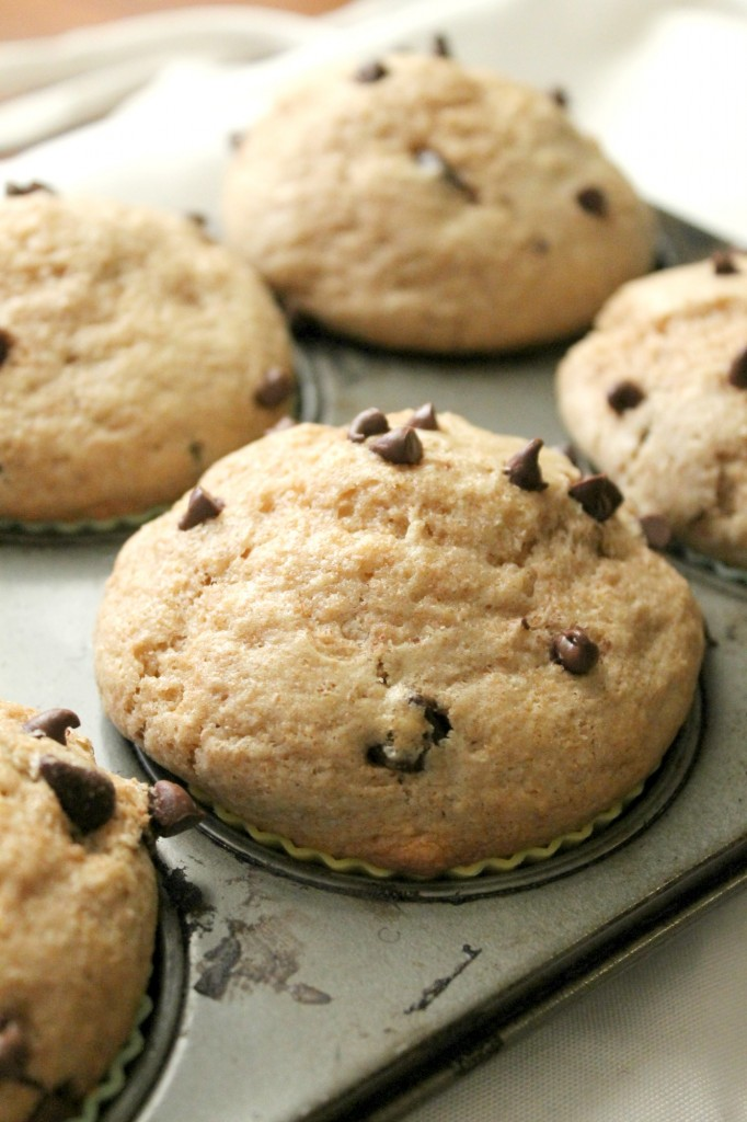 Whole Wheat Chocolate Chip Muffins | Natural Chow | http://naturalchow.com