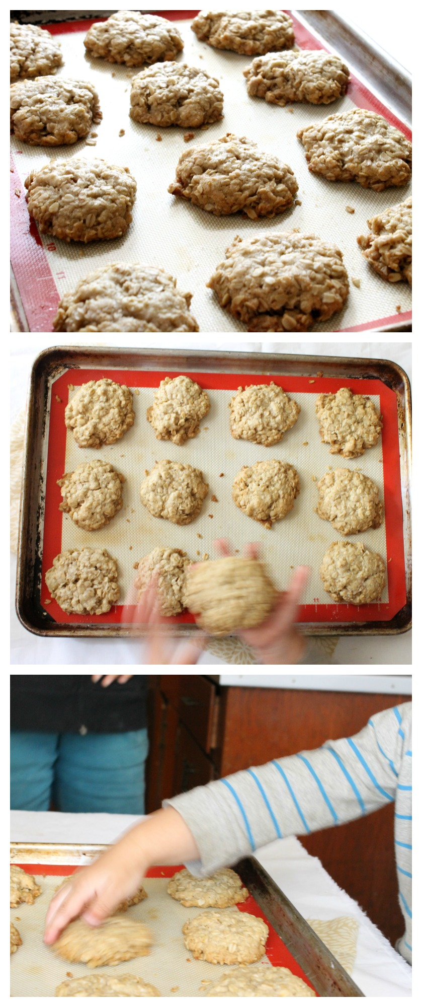 Vegan Coconut Oil Cookies { + A Giveaway} | Natural Chow | http://naturalchow.com