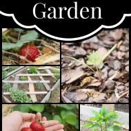 Our 2014 Garden