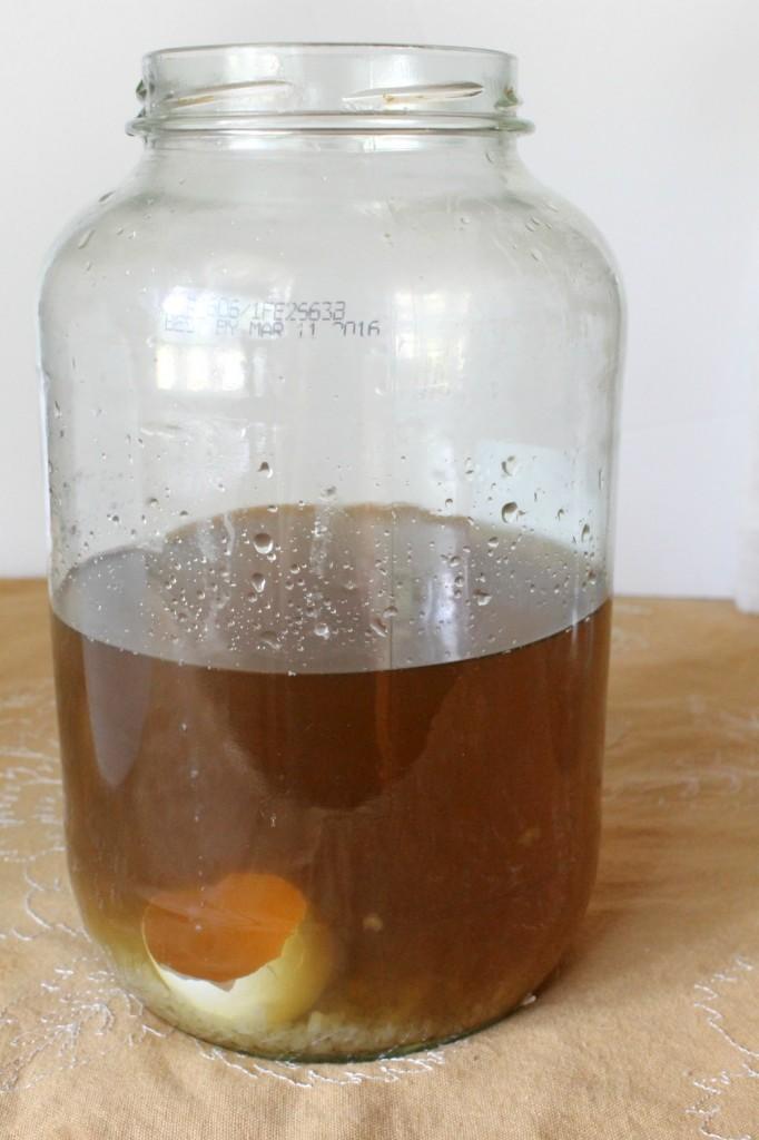 How to Make Water Kefir | Natural Chow | http://naturalchow.com