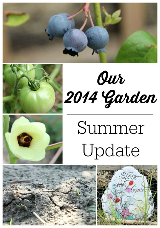 Our 2014 Garden Summer Update | Natural Chow | http://naturalchow.com