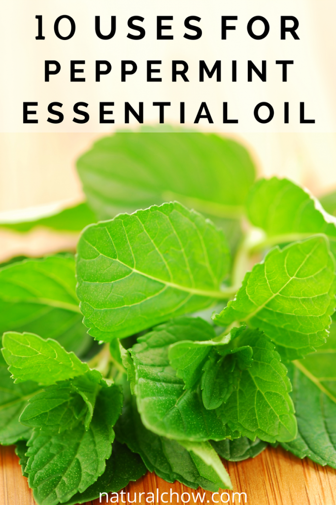 10 Uses for Peppermint Essential Oil | Natural Chow | http://naturalchow.com