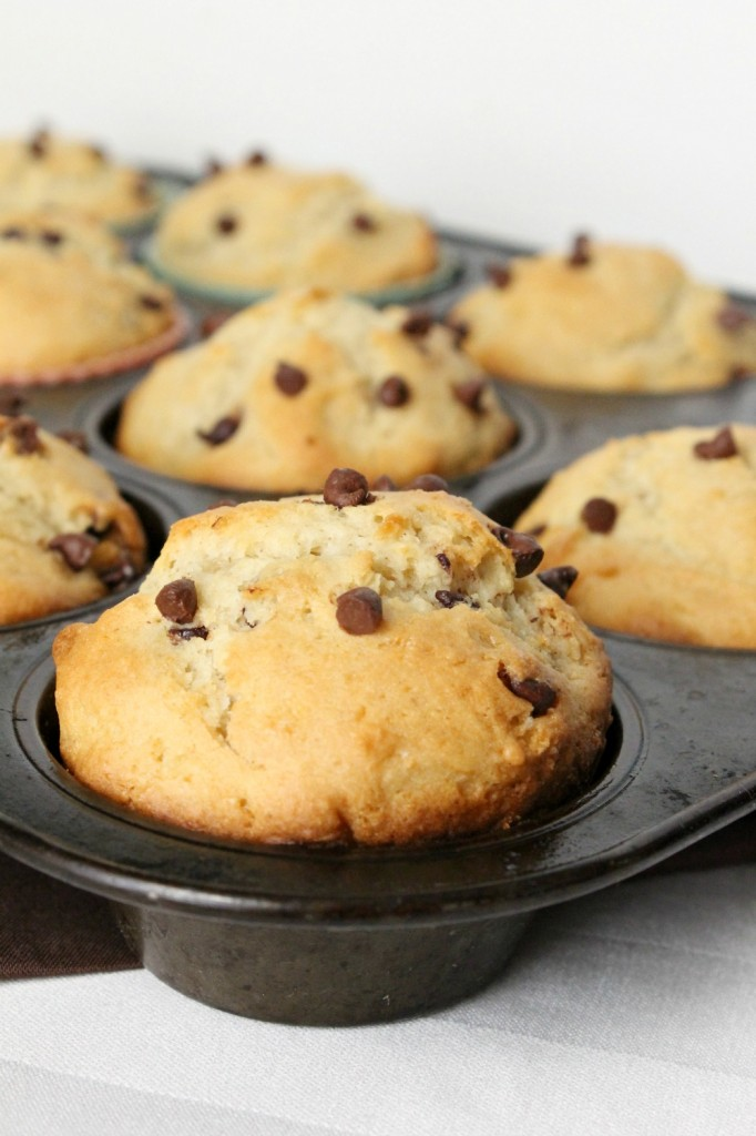 Gluten Free Chocolate Chip Muffins   Natural Chow
