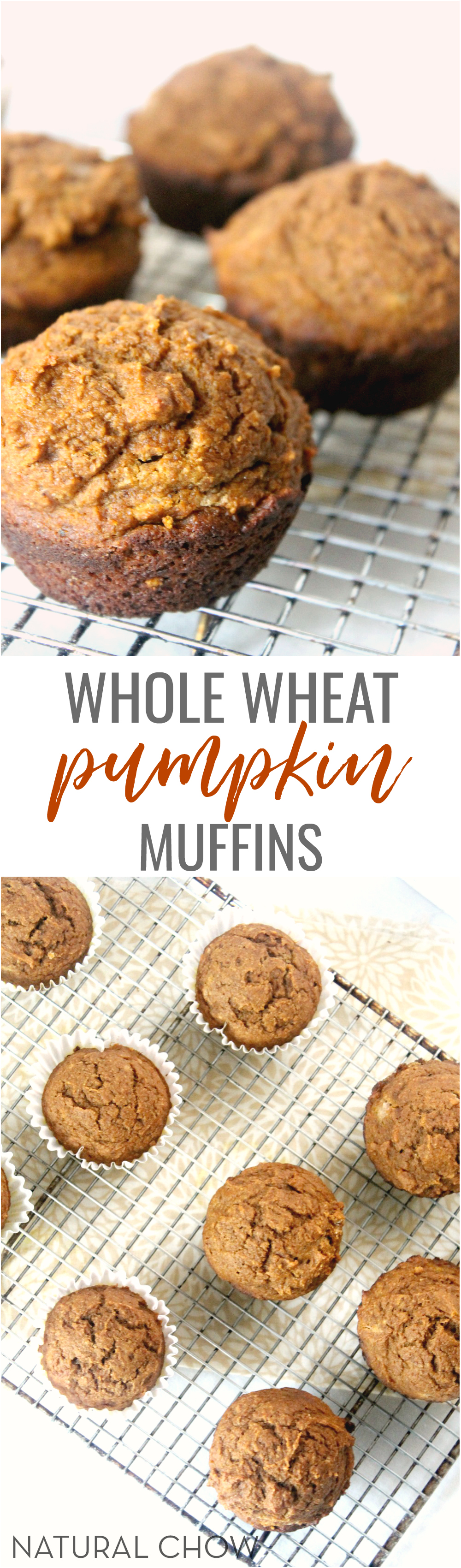 These whole wheat pumpkin muffins, slathered with butter and drizzled with a little bit of honey are like a bite of heaven. Pumpkin lovers rejoice!