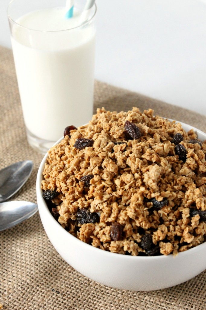 Cinnamon Raisin Peanut Butter Granola Cereal | Natural Chow