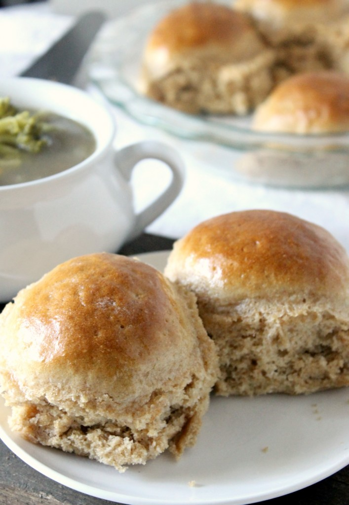 Honey Whole Wheat Dinner Rolls | Natural Chow