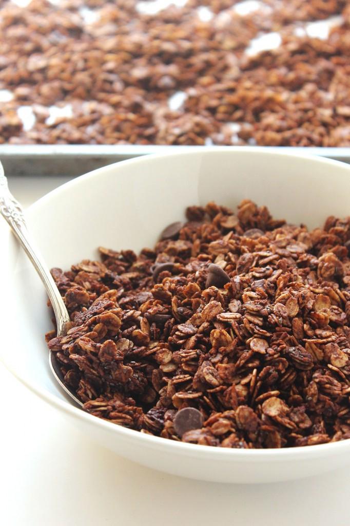 Skinny Dark Chocolate Chia Granola | Natural Chow | http://naturalchow.com