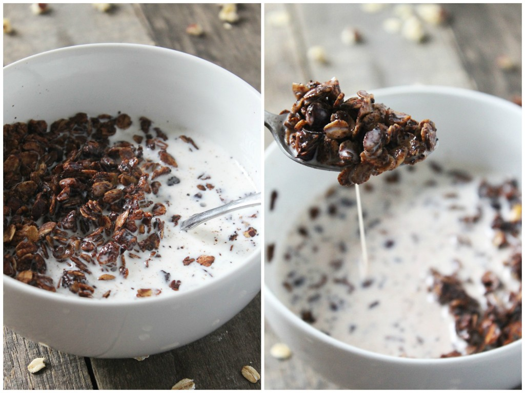 Packed with dark chocolate coffee flavor, this mocha hazelnut granola is soon to become a breakfast staple. It's crunchy, chocolaty, and super easy to make!