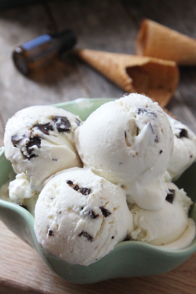 This refreshing, sweet, and rich mint chocolate chip ice cream is loaded with flavor and will surely become your go-to summer dessert!