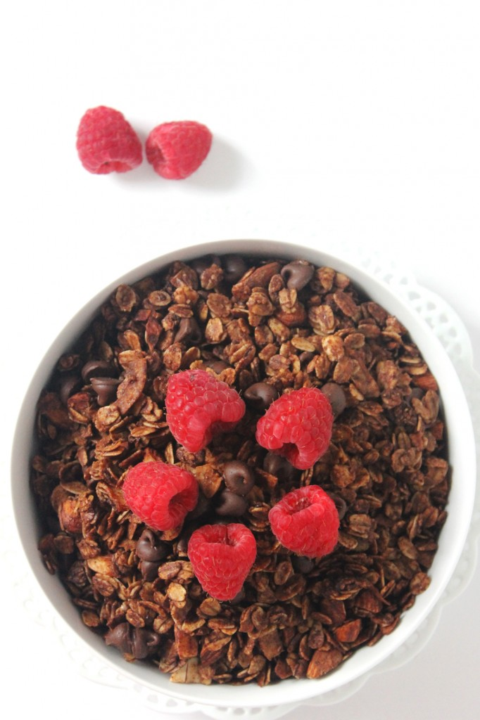 Get double the chocolaty goodness in every bite with this easy-to-make healthy double chocolate coconut granola! With its intense chocolate flavor and light coconut notes, you'd never think this indulgent granola was good for you.