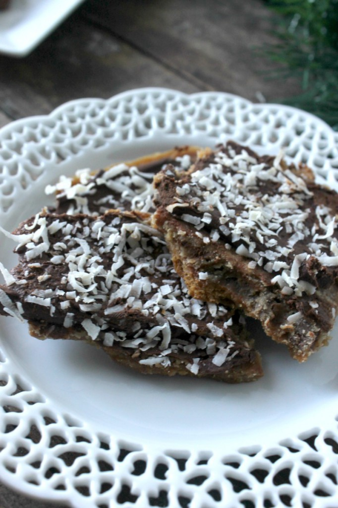 Chocolate coconut bark 10